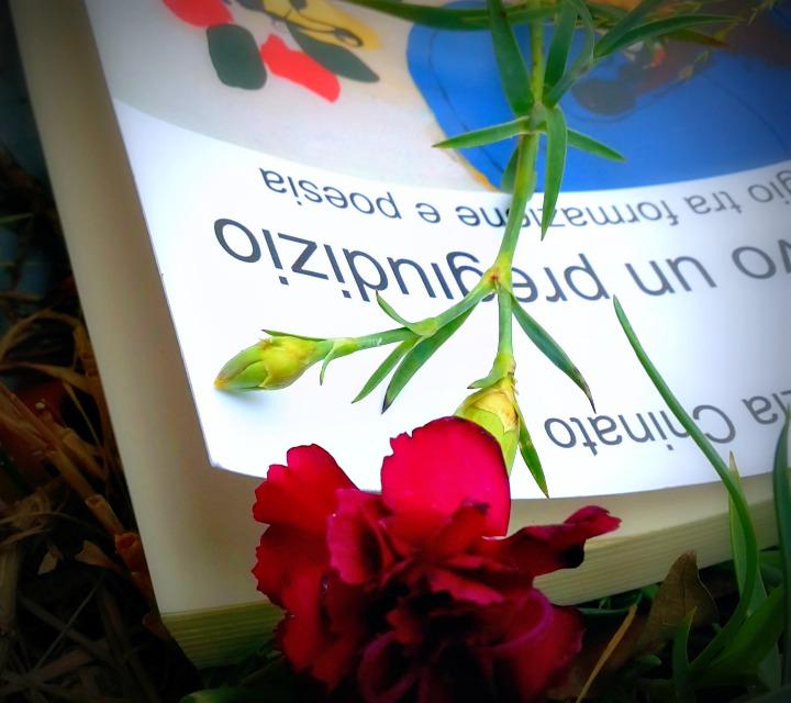 """Mercedes Spada:  commento al libro """"Avevo un pregiudizio"""""""